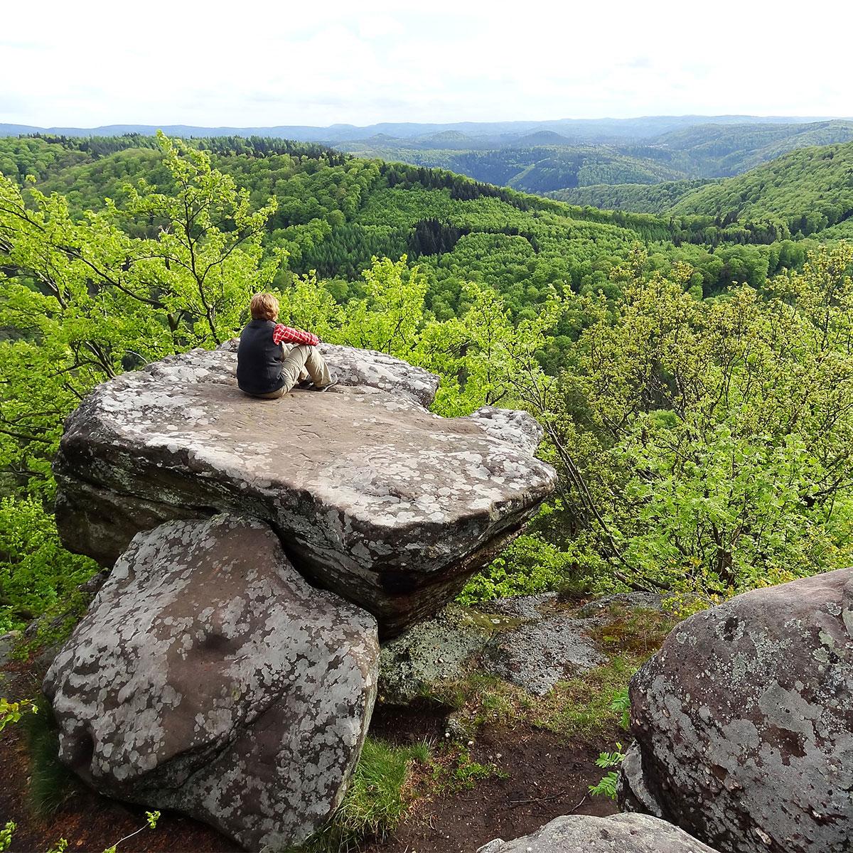 Wandern in der Pfalz - Drachenfels